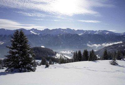 fiss_winter_25.jpg